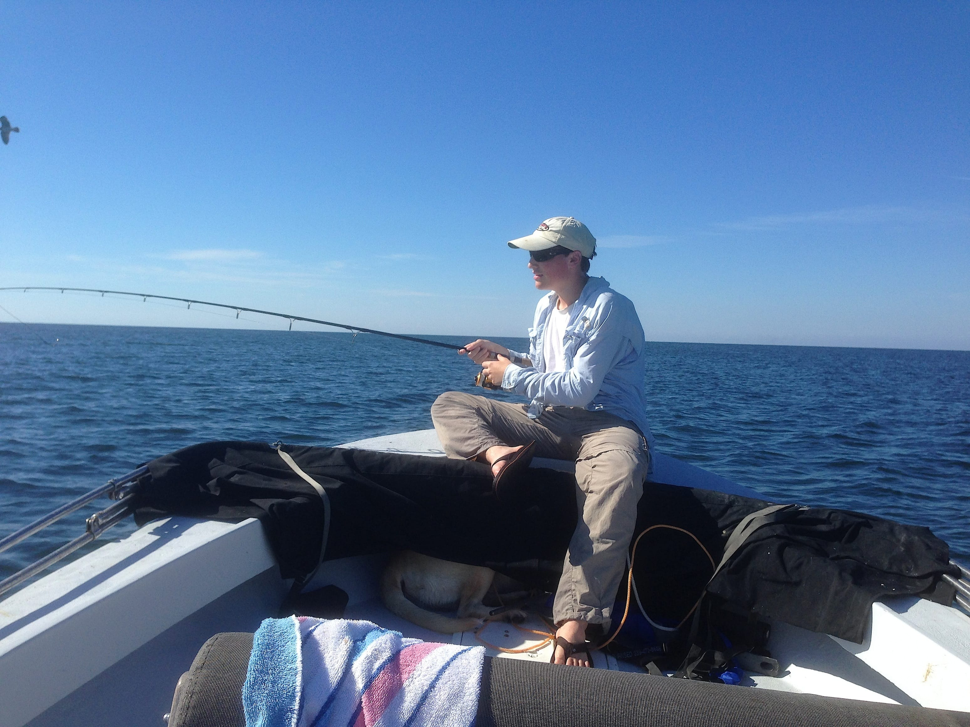 10 30 13 fort myers fishing report shark fishing off for Charlie s fishing report