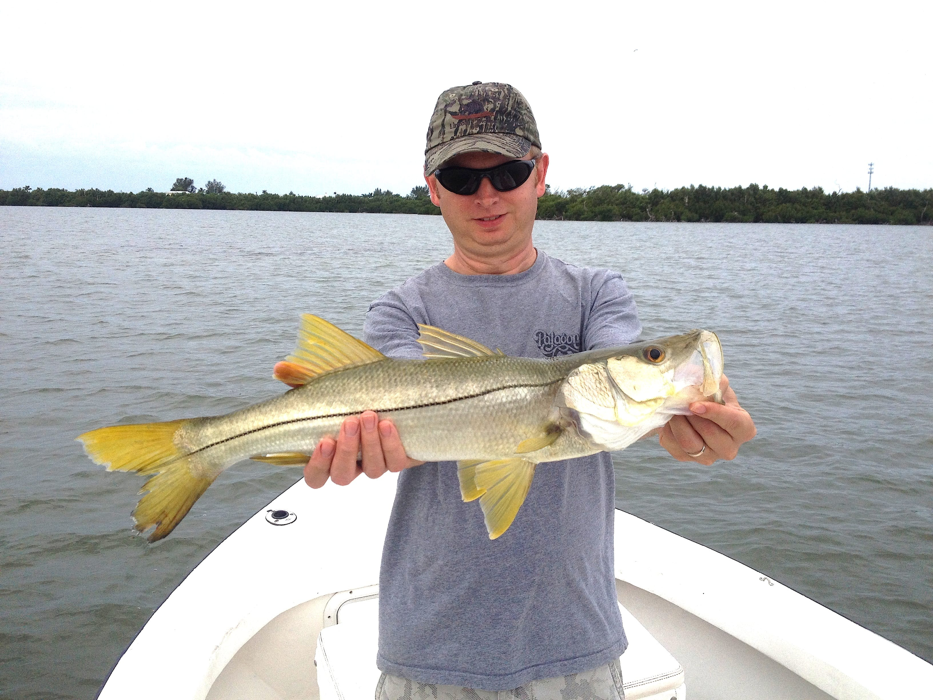 11 15 13 fort myers fishing report small snook oyster for Half day fishing trips fort myers