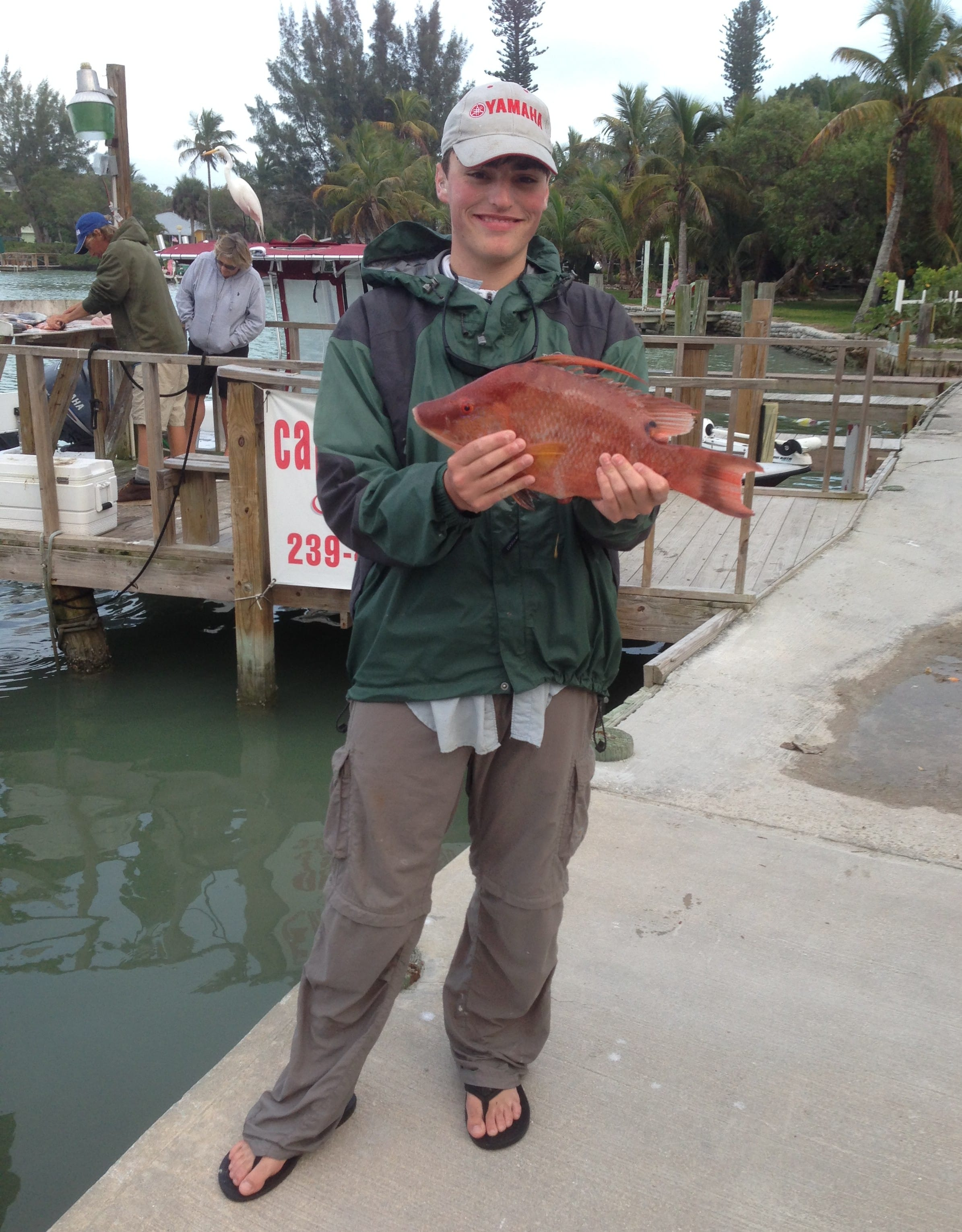 2 10 14 fort myers fishing report hog fish fortmyers for Half day fishing trips fort myers