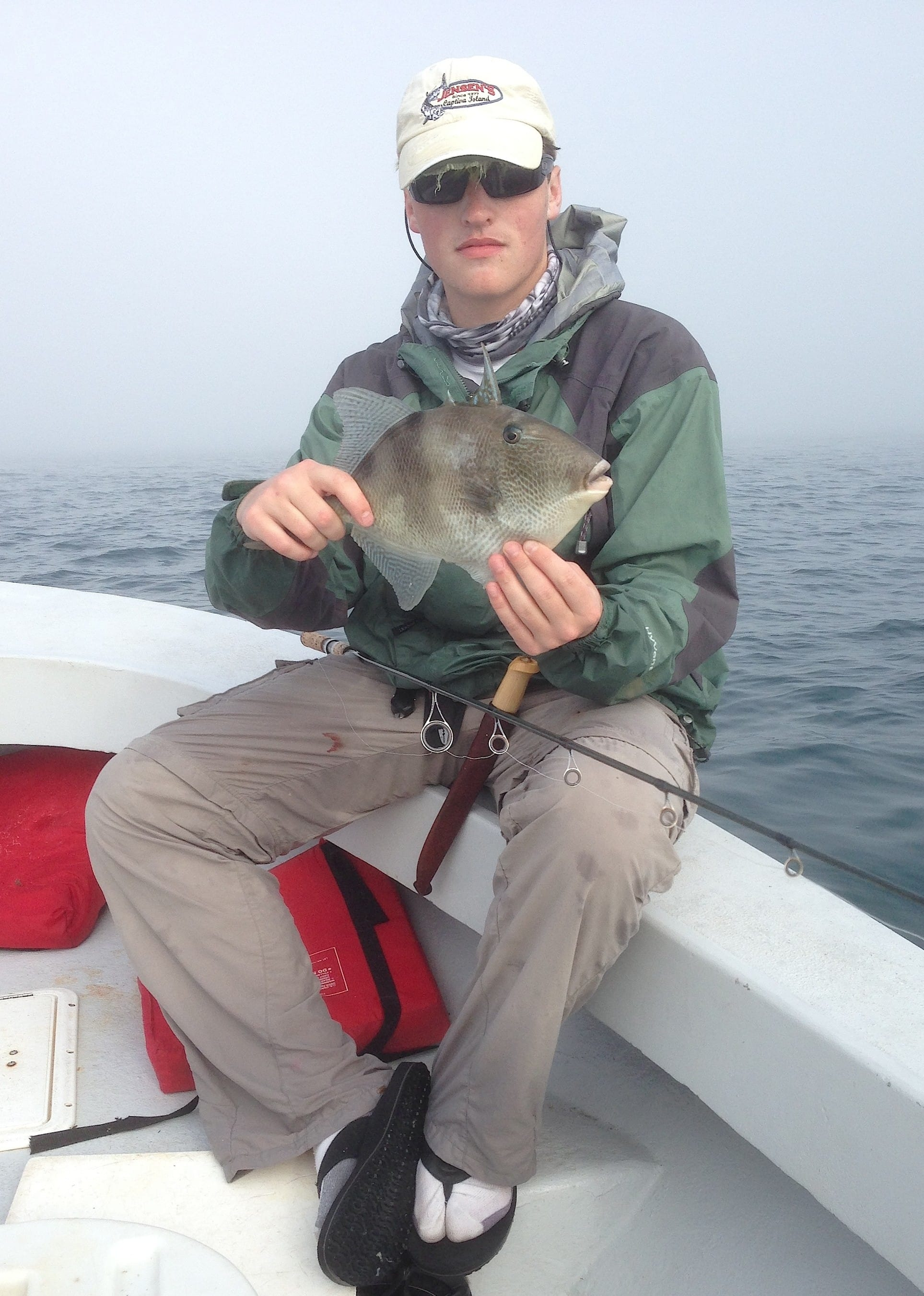 Fort myers fishing report 1 2 15 triggerfish for Charlie s fishing report